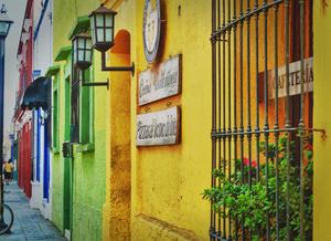Oaxacan Colors