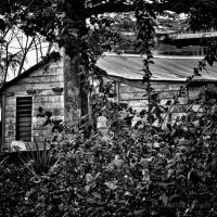 houseandgarden
