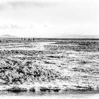 WalkingOnChileanSaltFlats