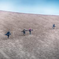 sandboarders