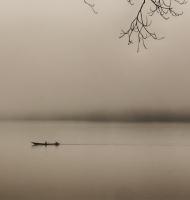 amazonmorning