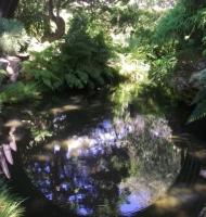 Tea Garden Bridge