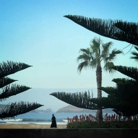 paradiseinEssaouira